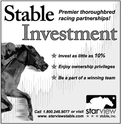 A Stable Investment